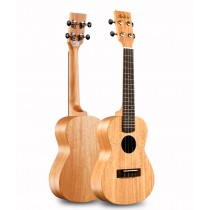 音樂 初學者 自學 新手 入門 兒童 小吉他 23寸 男女生 烏克麗麗